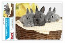 Buro BU-M40092 рисунок/кролики